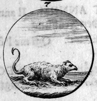 facsimile of late-17th-century engraving